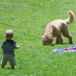 シッターのお手本。犬と赤ちゃんが教えてくれた、相手を思いやる気持ちの大切さ。