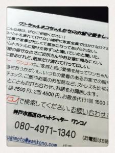 IMG_5027.JPG