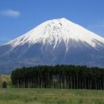 これも残り福?欲しかった富士山のカレンダー、ラスト1個~ペットシッターワンコノ開運グッズ、増えてます。