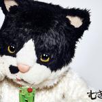 むぎ(猫)が歌う「るすばん天国」があるあるすぎる!~神戸市西区ペットシッターワンコノの注目アーティスト